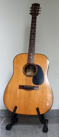 Guitar Levin W36